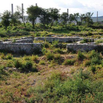 Castrul Roman Buridava
